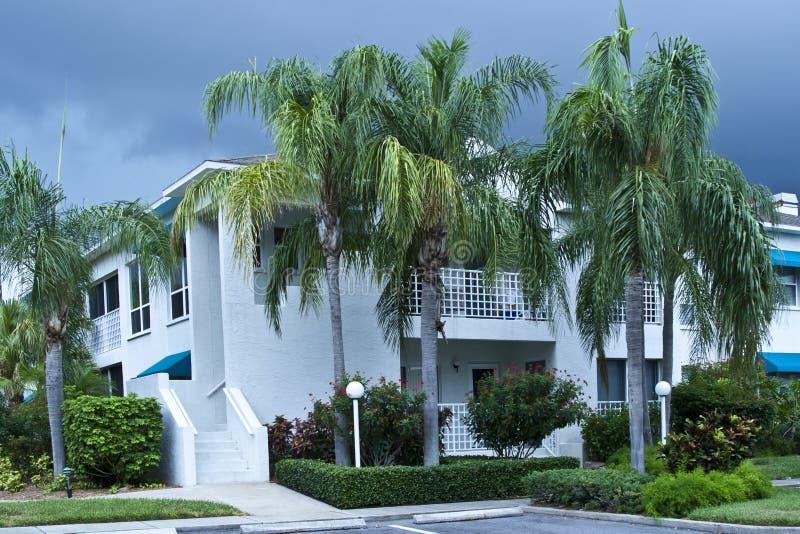 Luxury condominiums in tropics royalty free stock image