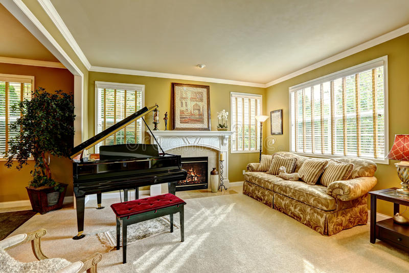 Luxury Family Room With Grand Piano Stock Image Image Of