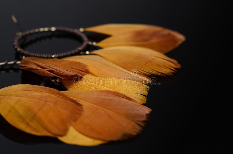 Luxury fashion pearl earrings on black background. Gold fashion feather earrings on a black background stock image