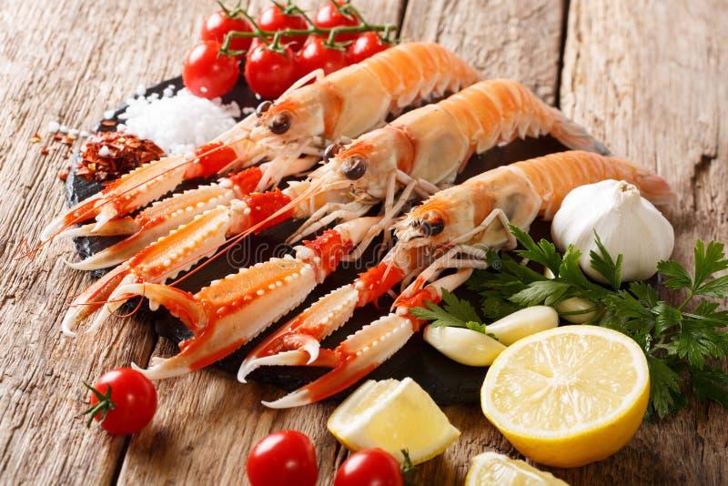 Luxury fresh raw langoustine, scampi with ingredients close-up o stock photo
