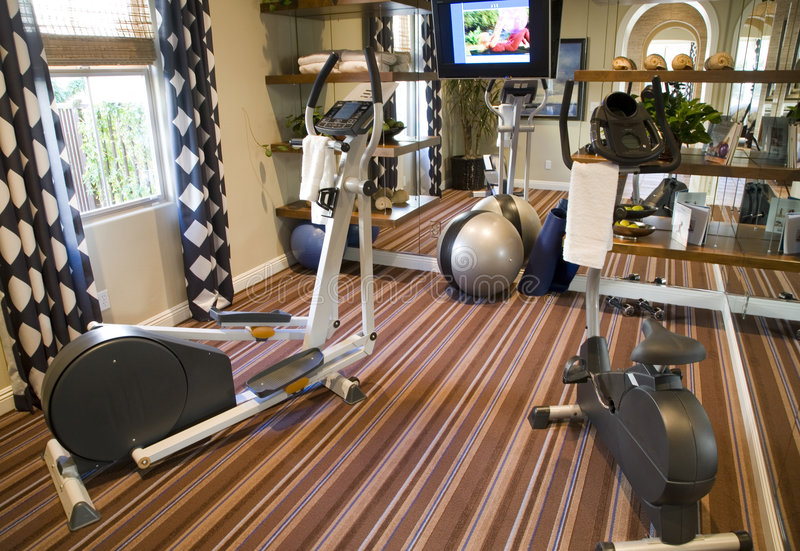Download Luxury home gym stock photo. Image of lifestyle, mansion - 4162988