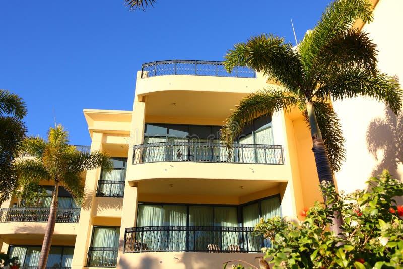 Download Luxury hotel stock image. Image of palm, luxury, sunlight - 24552479