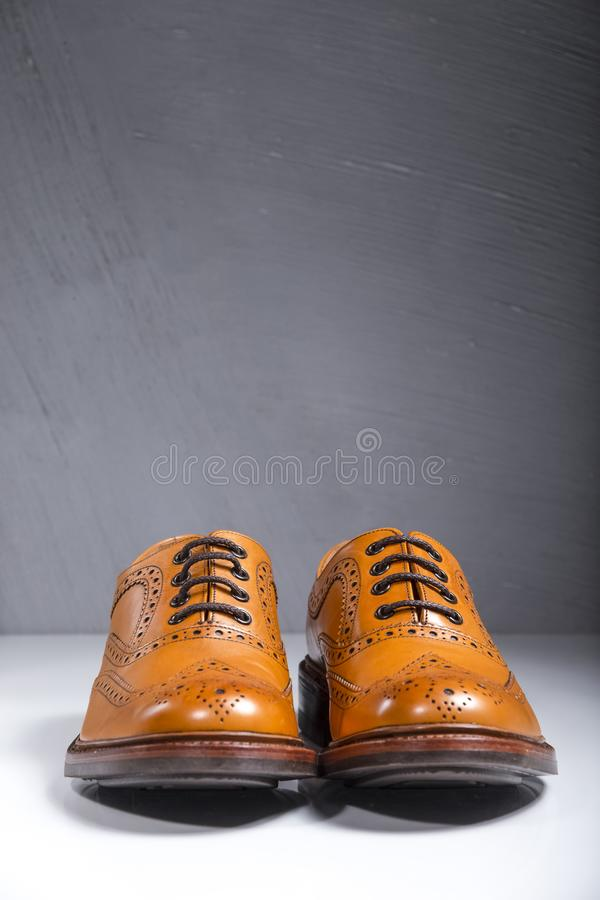 Luxury Male Full Broggued Tan Leather Oxfords Shoes Placed Over. White Surface. Against Gray Wall. Vertical Image stock photography