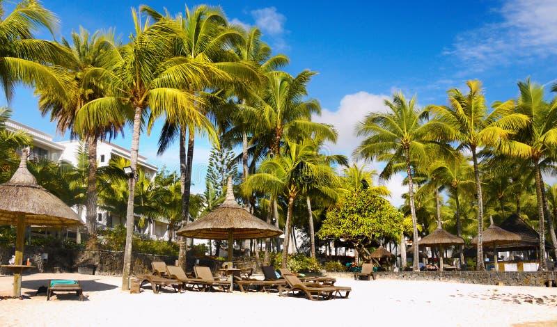 Luxury Palm Beach Resort, Mauritius Island. Tropical Palm Beach Resort at Grand Baie. Beautiful luxury holiday resort on Mauritius Island, Indian Ocean stock image