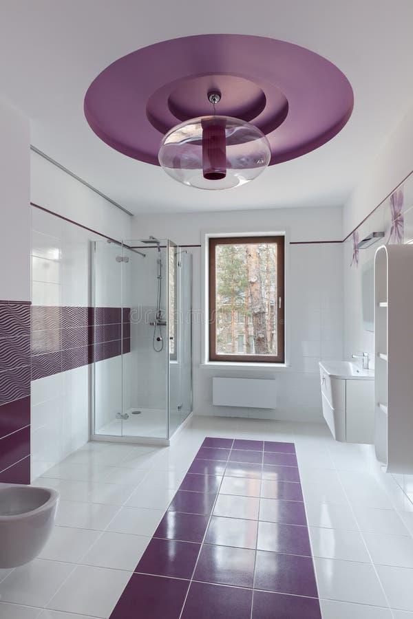 Luxury restroom interior stock image