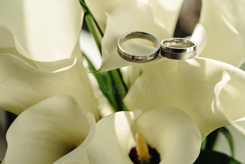 Luxury rich silver platinum wedding rings with diamonds on white royalty free stock image