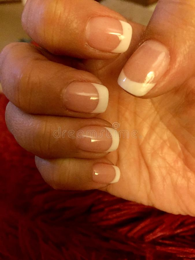 Luxury SNS French Manicure. Elegant and long lasting Signature Nail Systems SNS French manicure stock photo