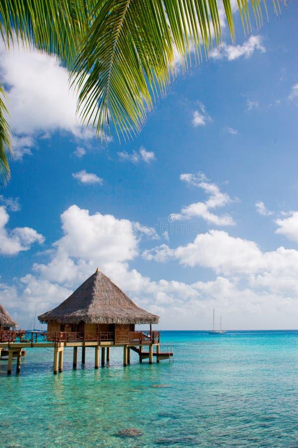 Luxury travel royalty free stock photo