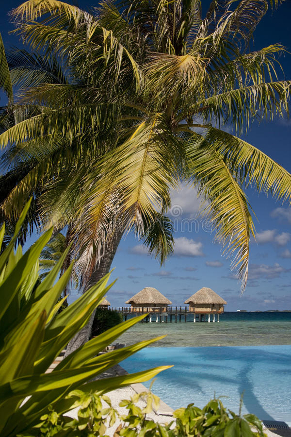 Luxury Vacation - French Polynesia. A luxury vacation resort in French Polynesia in the South Pacific Ocean royalty free stock images