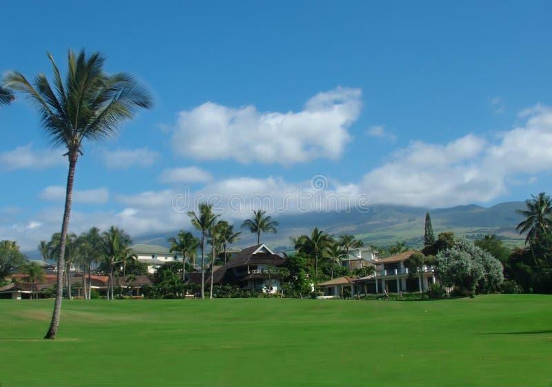 Luxury Villas royalty free stock photo