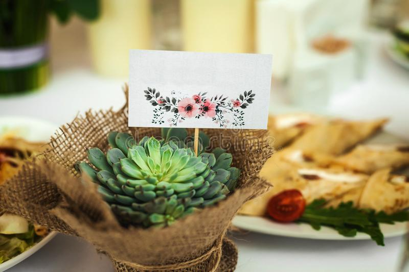 Present plant and meals on a wedding table stock photos