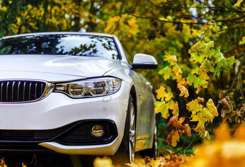 Luxury white car and autumn colors royalty free stock photography