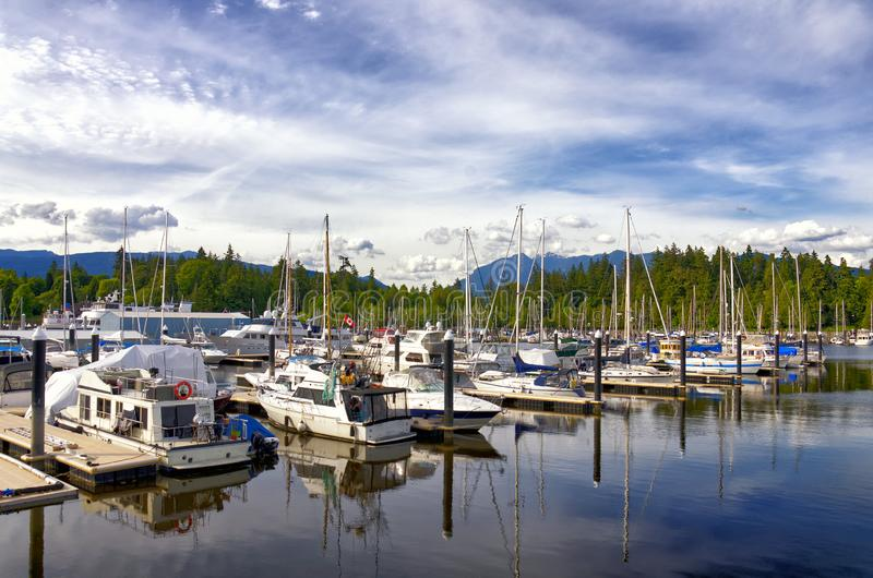 Beautiful cityscape of Vancouver. White Yachts in marina. Luxury white Yachts in beautiful Vancouver city marina, British Colombia CanadaBeautiful cityscape of stock images