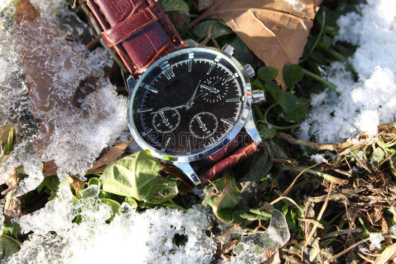 Download Luxury Wristwatch in Snow stock photo. Image of christmas - 83712116