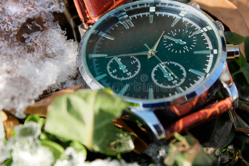 Download Luxury Wristwatch in Snow stock photo. Image of esprit - 83713430