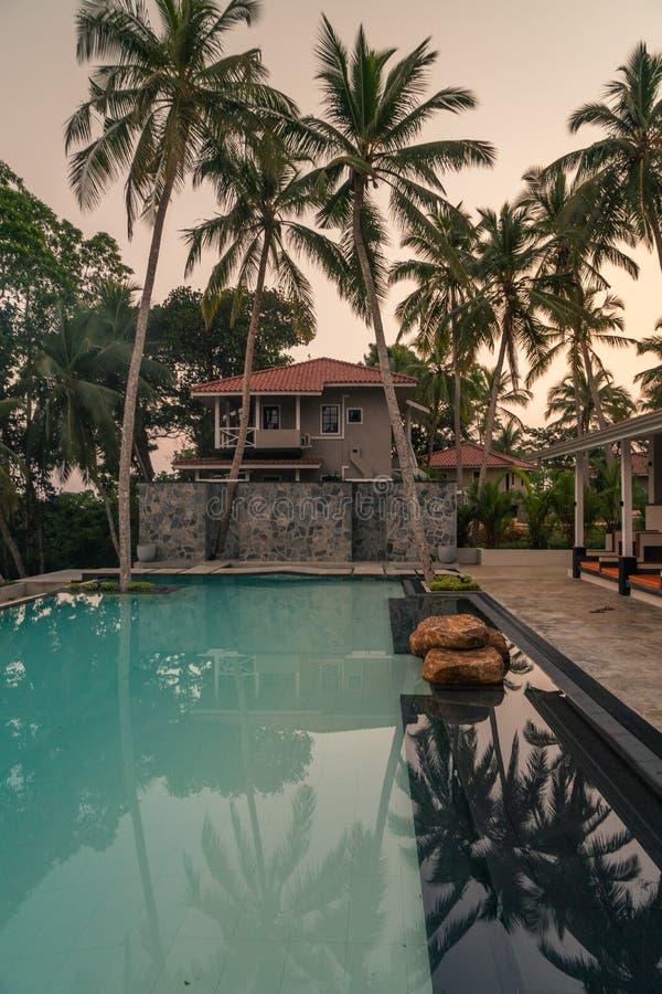 Luxus-Resort mit Swimmingpool und tropische Landschaftspalme bei Sonnenuntergang stockbilder
