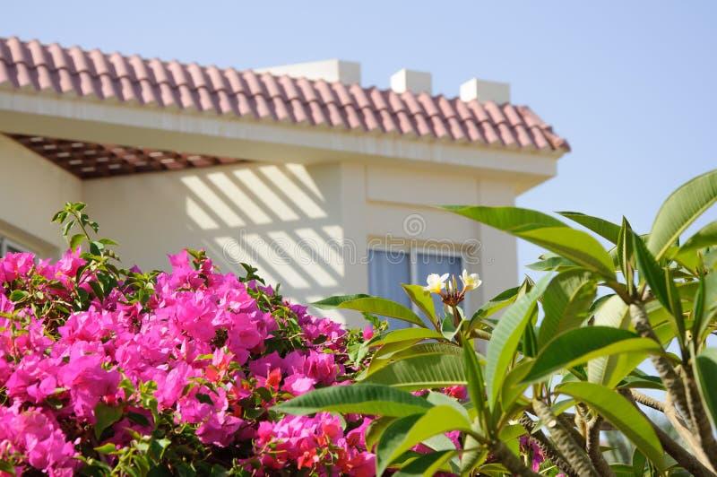Luxuslandhaushotel im tropischen Garten stockbild