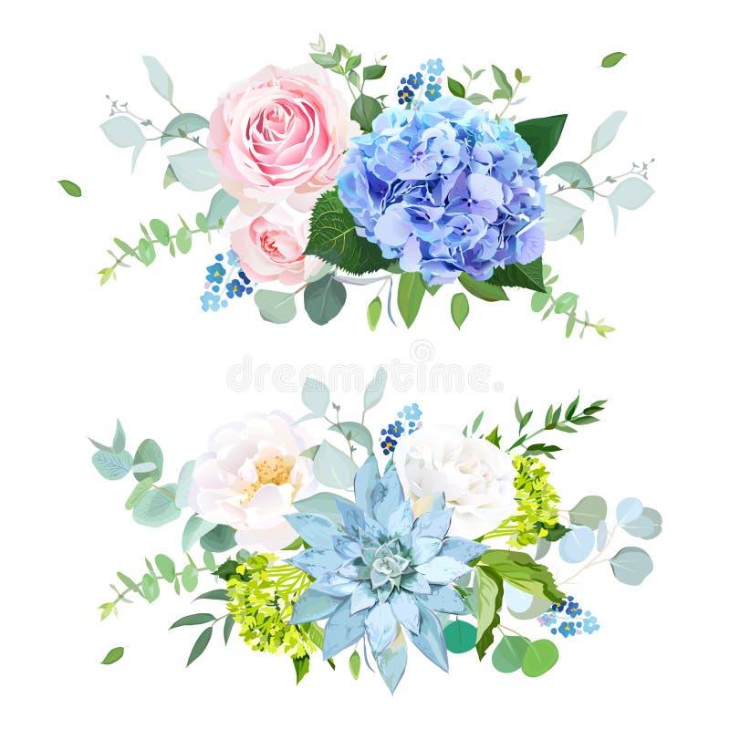 Luz - azul, esverdeie a hortênsia, o rosa, rosa do branco, planta carnuda, esquece ilustração do vetor