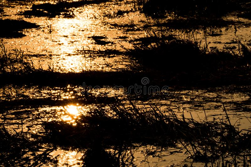 A luz bate a água, por do sol na noite fotografia de stock royalty free