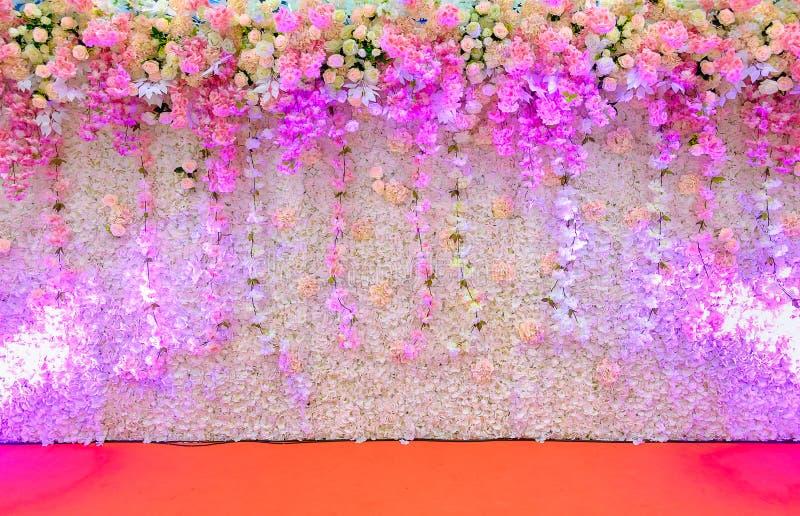 Luz blanca hermosa del punto del contexto de la flor rosada y blanca imagenes de archivo