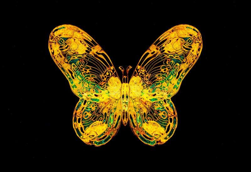 Luz - borboleta do amarelo e da cor dos tirkys no bckground preto ilustração do vetor