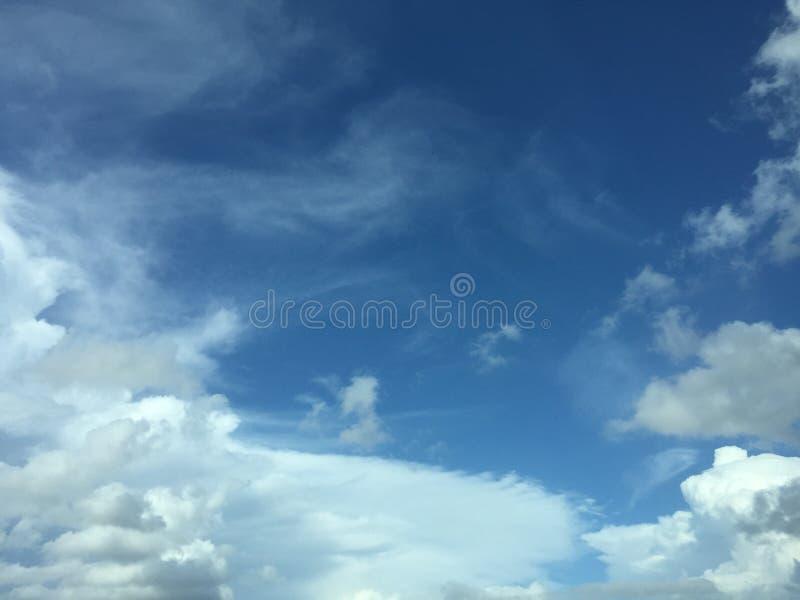 Luz clara - céus azuis & x28; Luz do dia & x29; fotografia de stock royalty free
