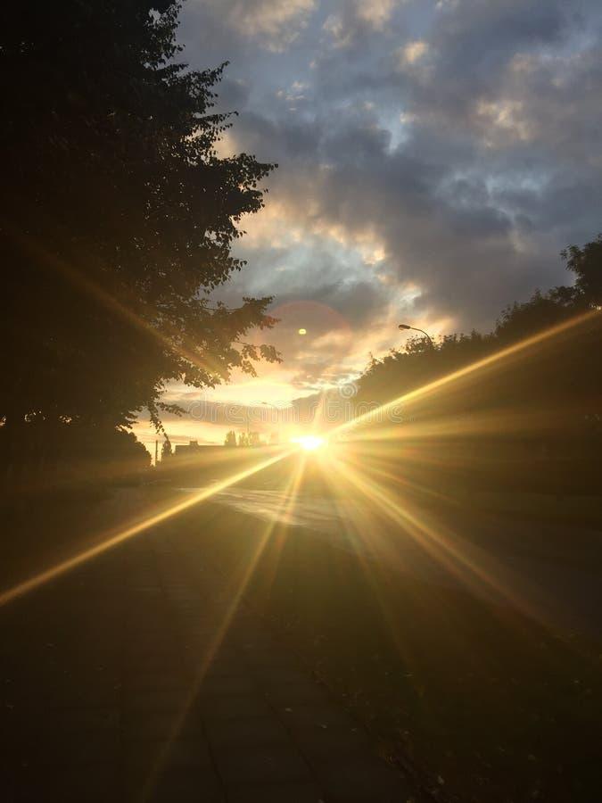 Luz da luz do sol da manhã do dia fotografia de stock