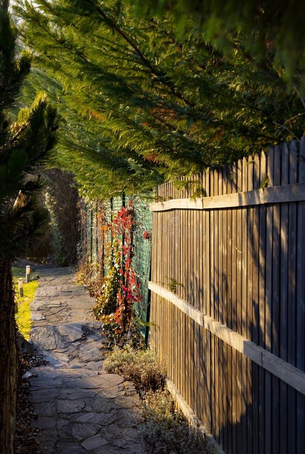 Luz da manhã em um trajeto do jardim com cerca de madeira e árvores verdes na cor intensiva imagem de stock