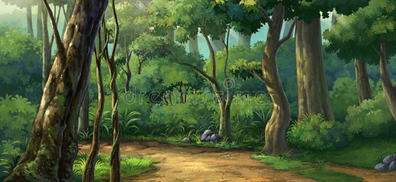 Luz da manhã na floresta ilustração royalty free