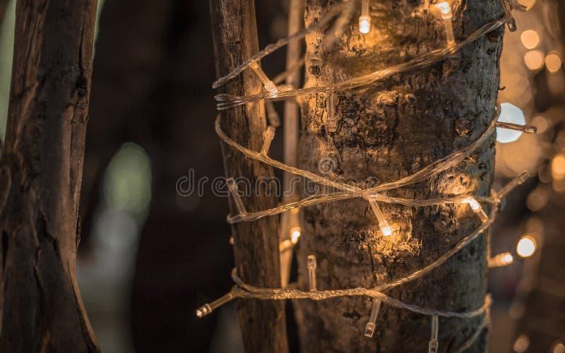 Luz de Bokeh LED en el árbol en el día de la Navidad en Lampang tailandés fotografía de archivo libre de regalías