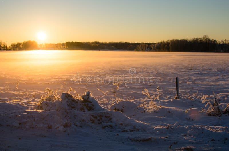 Luz de la tarde en la puesta del sol en el invierno estonio imagen de archivo libre de regalías