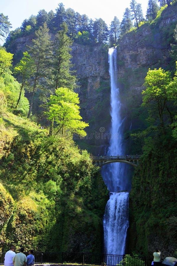 Luz de la tarde en las caídas superiores y más bajas de Mulnomah, garganta del río Columbia, Oregon imagen de archivo