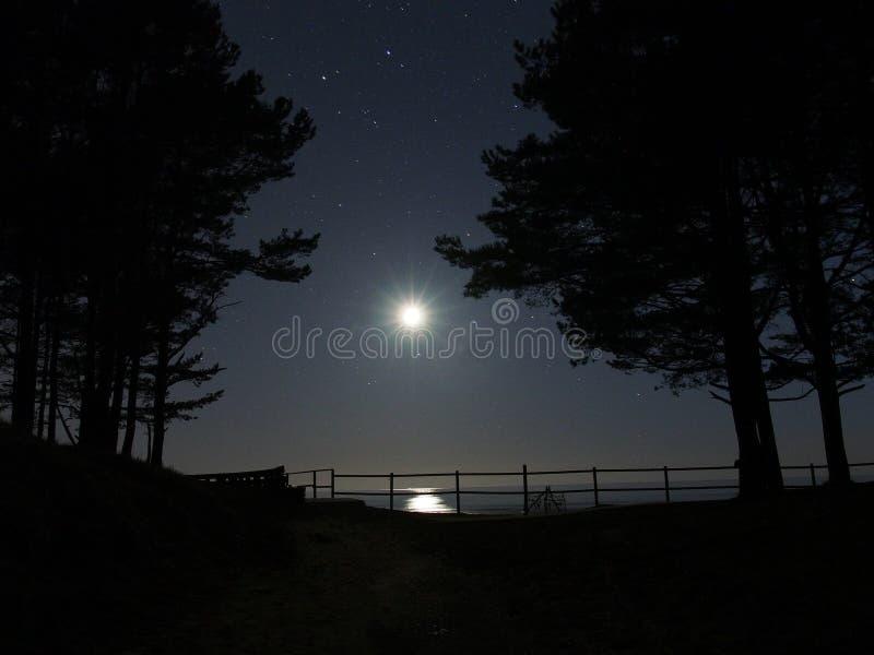 Luz de lua e constelação do gamini das estrelas sobre o mar Báltico fotos de stock