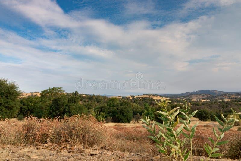 Luz del sol de la madrugada en las colinas de California meridional en otoño, foto de archivo libre de regalías