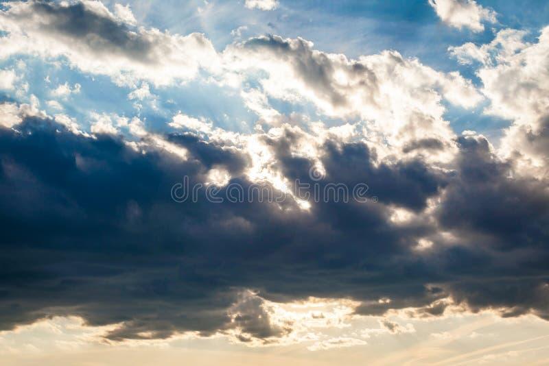 Luz del sol de oro fotografía de archivo