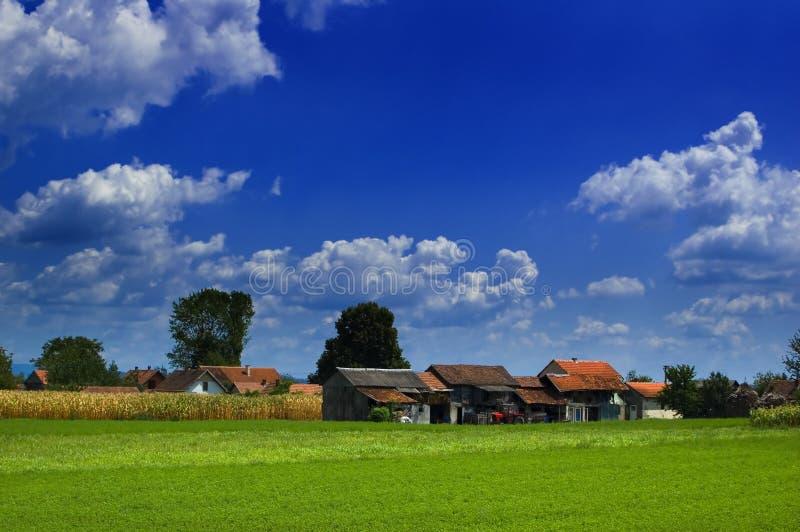 Luz del sol en granjas fotos de archivo