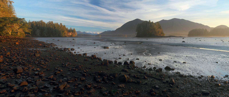 Luz do amanhecer na entrada Mudflats de Tofino, Tofino, ilha de Vancôver, Canadá foto de stock
