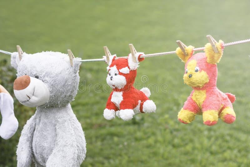 Luz do dia em uma corda que pendura children' macio; brinquedos de s são fixados com um pregador de roupa foto de stock