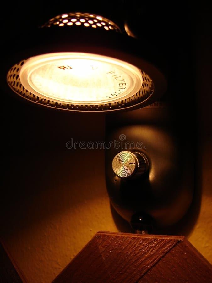 Luz do halogênio na noite fotografia de stock royalty free