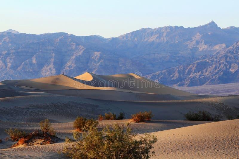 Luz do nivelamento atrasado em dunas de areia lisas do Mesquite no parque nacional de Vale da Morte, Califórnia foto de stock royalty free
