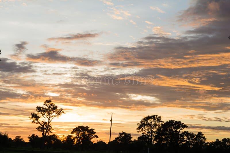 Luz do sol bonita na manhã e no cinza imagem de stock royalty free