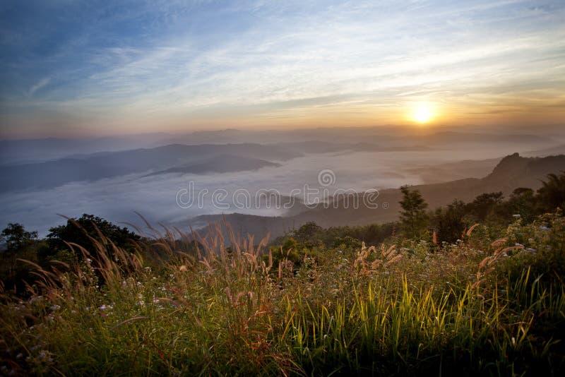 Luz do sol da manhã. fotografia de stock royalty free