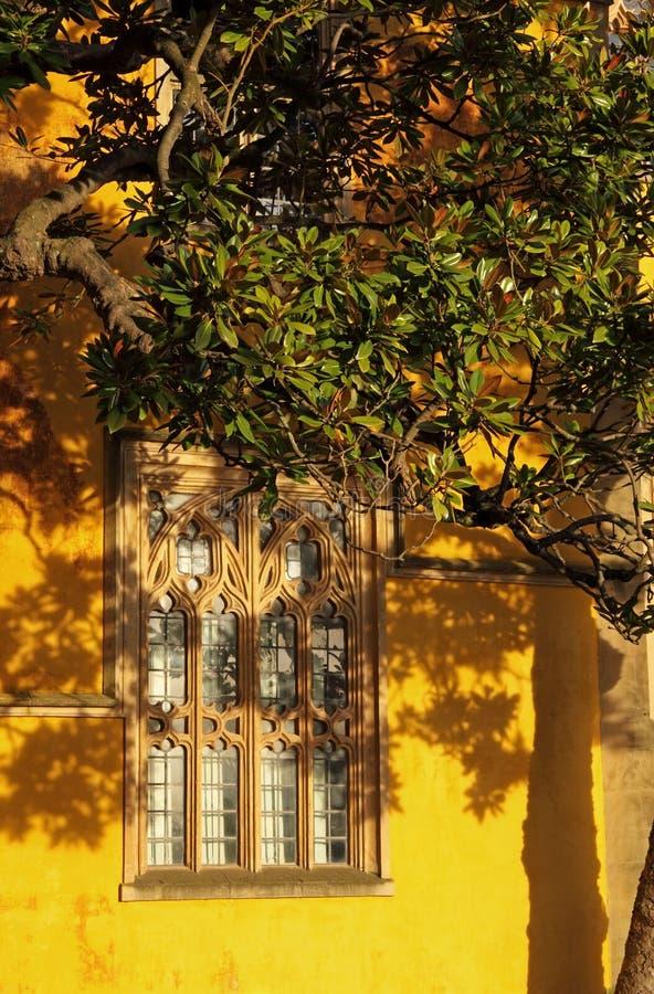 Luz do sol do inverno em Oxford foto de stock royalty free