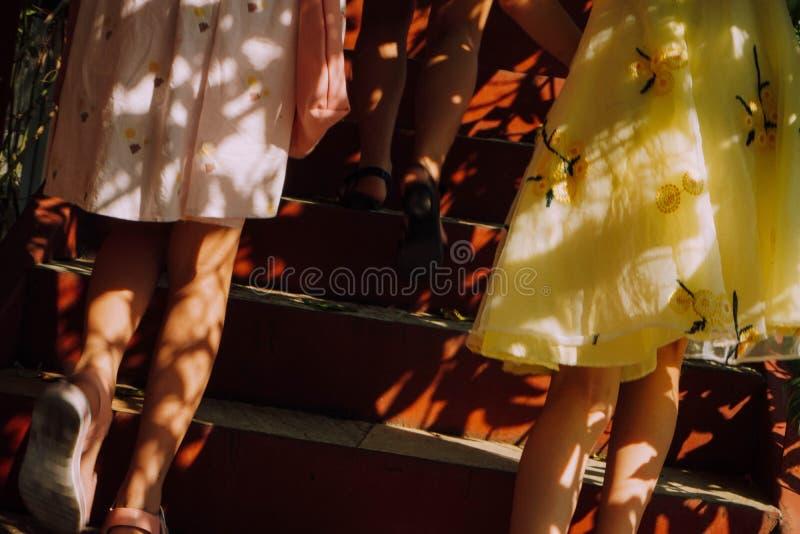 Luz do sol e meninas foto de stock