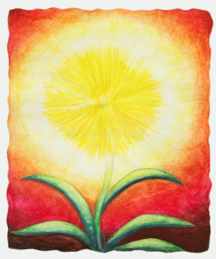 Luz do sol Flor (1999) ilustração do vetor