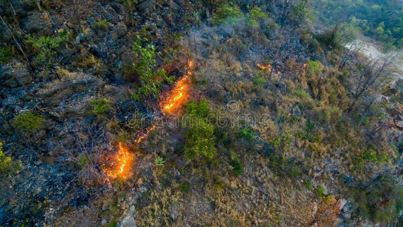 luz do sol no incêndio violento fotografia de stock