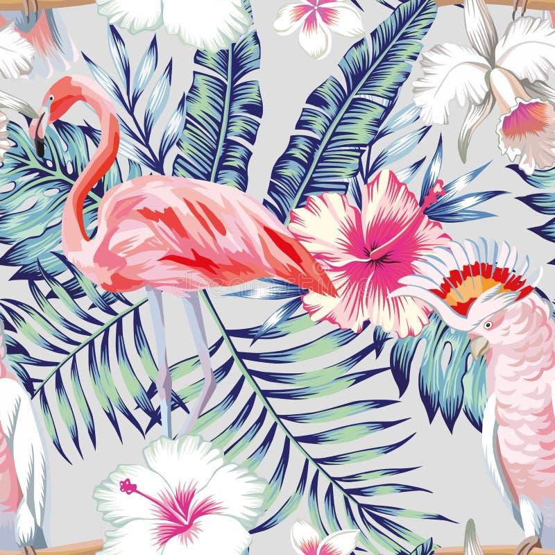 Luz do teste padrão do papagaio do flamingo do hibiscus da orquídea ilustração stock