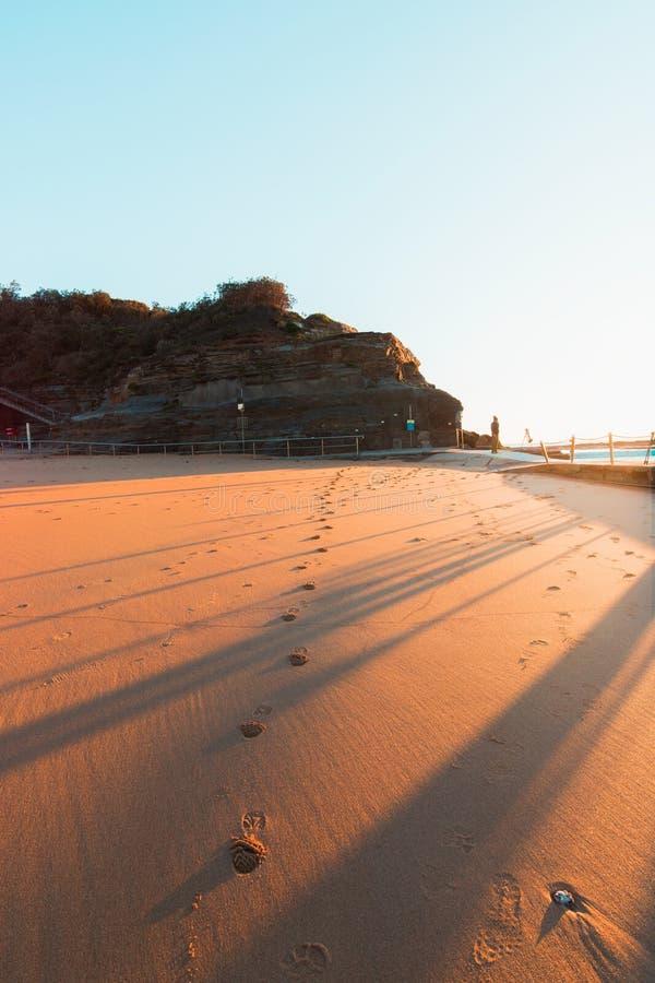 Luz dourada na areia imagens de stock