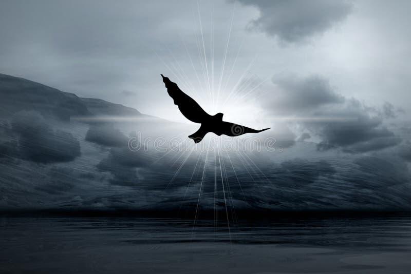 Luz enevoada nos céus e no pássaro ilustração stock