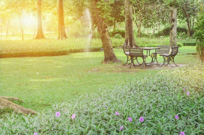 Luz hermosa de la ma?ana en parque p?blico fotos de archivo